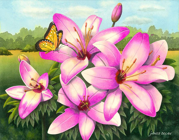 """Day Lillies"" fine art print by Jim Dolan."
