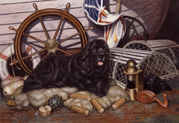 Captain's Pride open edition print of a Newfoundland dog