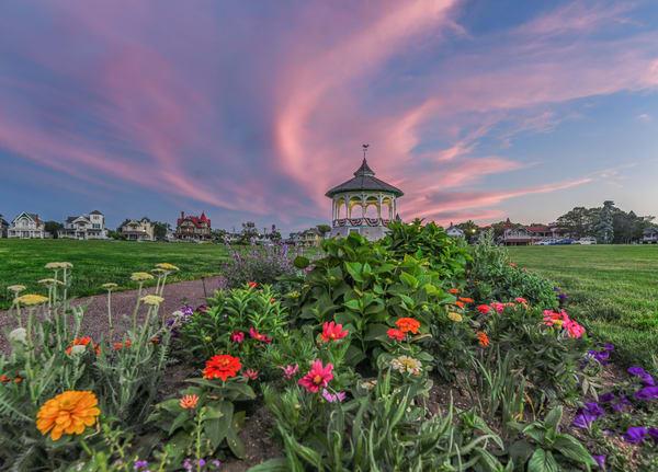 Bandstand Flowers Photography Art | Michael Blanchard Inspirational Photography - Crossroads Gallery