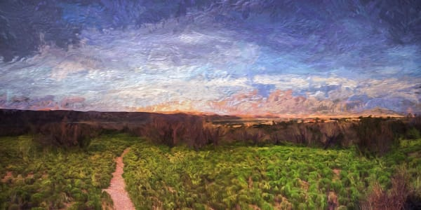 path, arroyo, sunset, Cochiti Lake