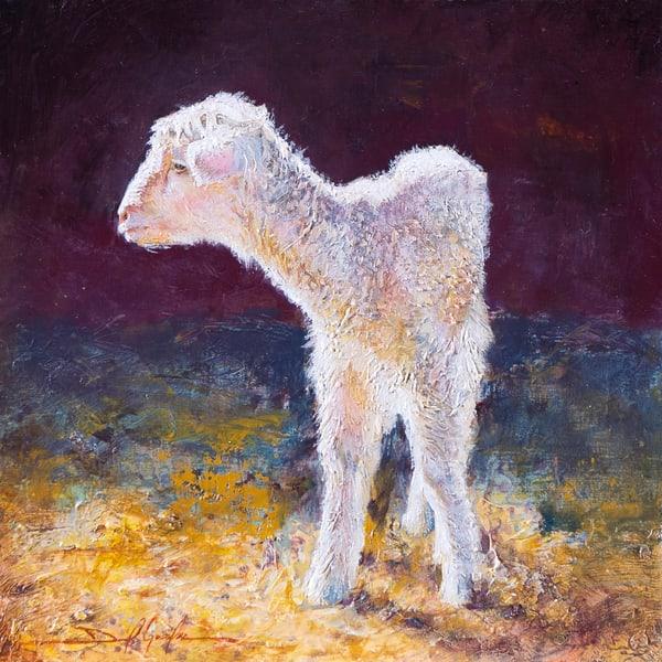 Baby Lamb Art   Danielsartwork