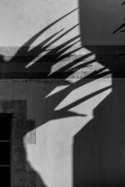 hair, urban, shadows,