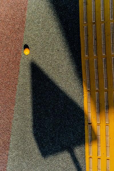 Pointed Lemon Photography Art | GW Fine Art Images