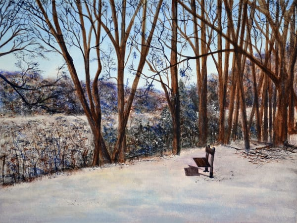 The Bench In The Park Art | Sharon Bacal - Fine Art