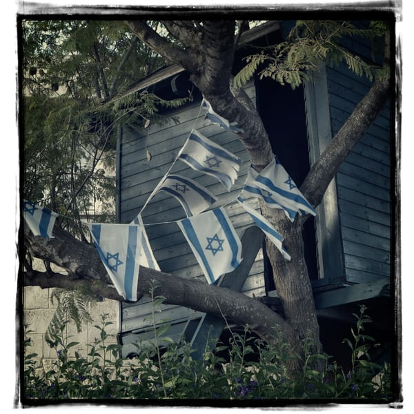 Tree House With Flags Photography Art | David Frank Photography
