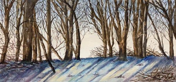 Winter Through The Trees Art | Sharon Bacal - Fine Art