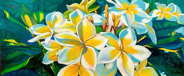 Plumeria Art | carolmeckling