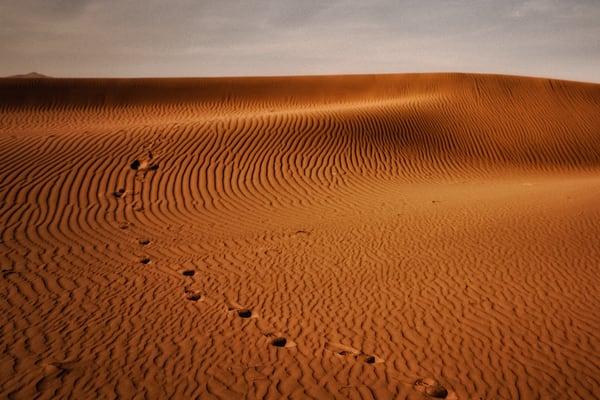 Dead Vlei Sand Dune Photography Art   nancyney