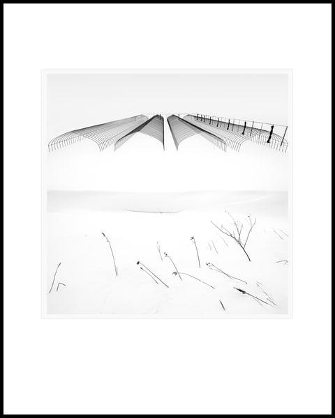Cloche Tunnels Art | Roy Fraser Photographer