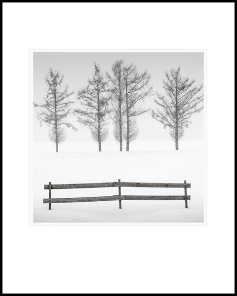 Fence Art | Roy Fraser Photographer