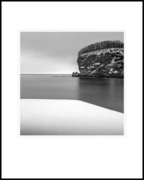 Tree Line Art   Roy Fraser Photographer