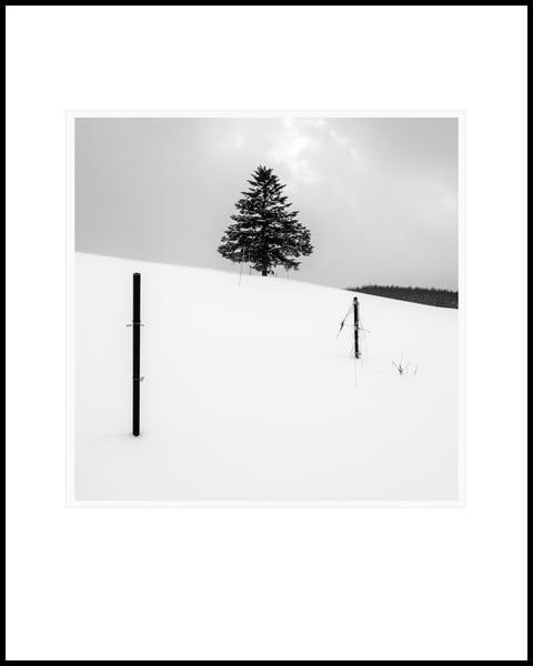 Follow The Sticks Art | Roy Fraser Photographer