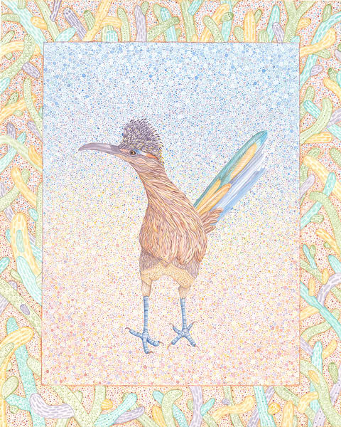 Standing Roadrunner Art | Birds by Boyd