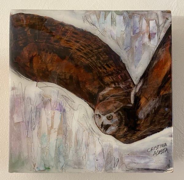Owl In Flight Art | Cristina Acosta Art & Design llc