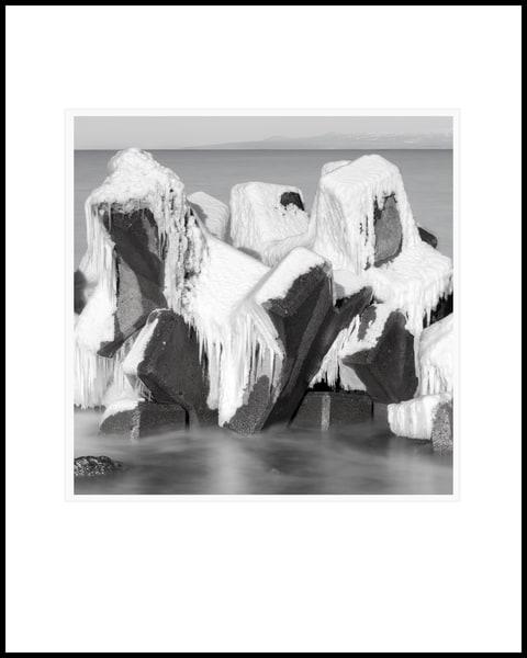 Tetrapods Study3 Art | Roy Fraser Photographer