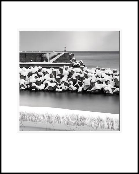 Tetrapods Study2 Art | Roy Fraser Photographer