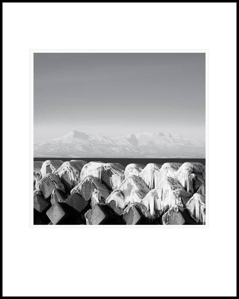 Tetrapods Study4 Art | Roy Fraser Photographer