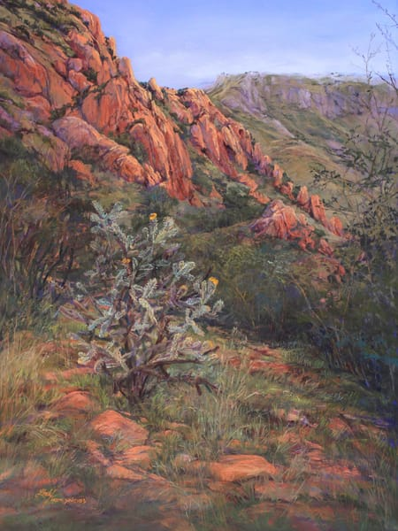 Lindy Cook Severns Art | A Place of Eagles, enhanced print