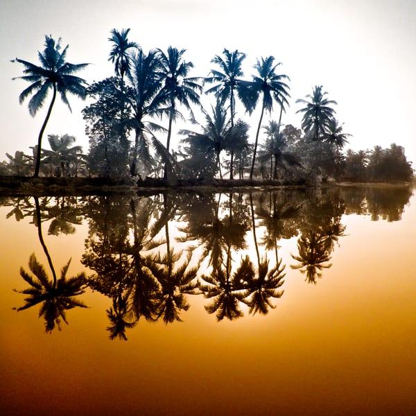 Mirrored Palms Photography Art | nancyney