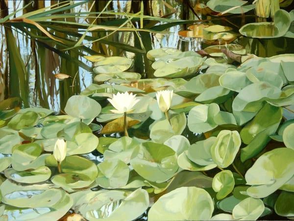 Pond Garden In Summer Art | Helen Vaughn Fine Art
