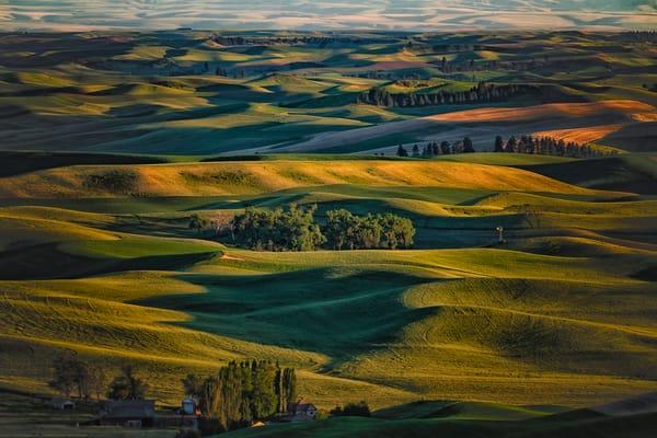 Steptoe Field Photography Art | nancyney
