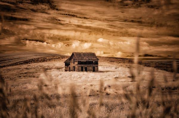 Solitude Photography Art | nancyney