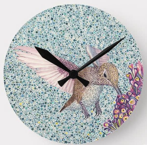 Hummingbird Wall Clock Art | Birds by Boyd