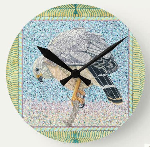 Grey Hawk Wall Clock Art | Birds by Boyd