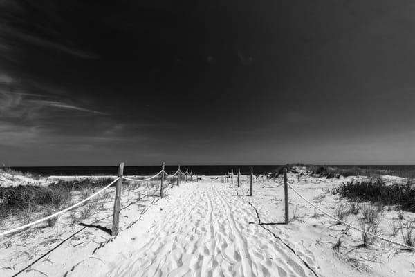 Delaware Seashore Art   Brandon Hirt Photo