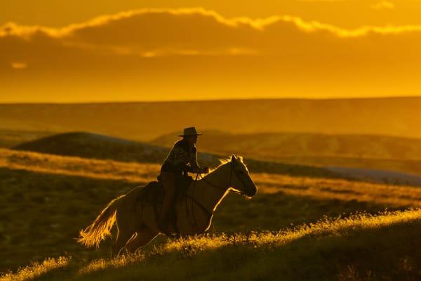 R Im Light Rider Photography Art | nancyney