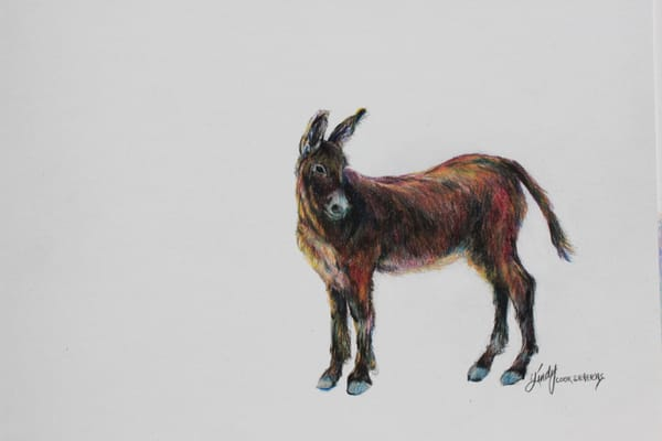 Lindy Cook Severns Art | Wild and Free, signed edition