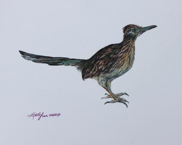 Lindy Cook Severns Art | Roadrunner, signed edition