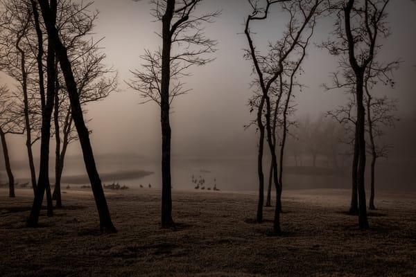 Leggett Pond G  9685 Adj  19 Fs Art | Koral Martin Fine Art Photography