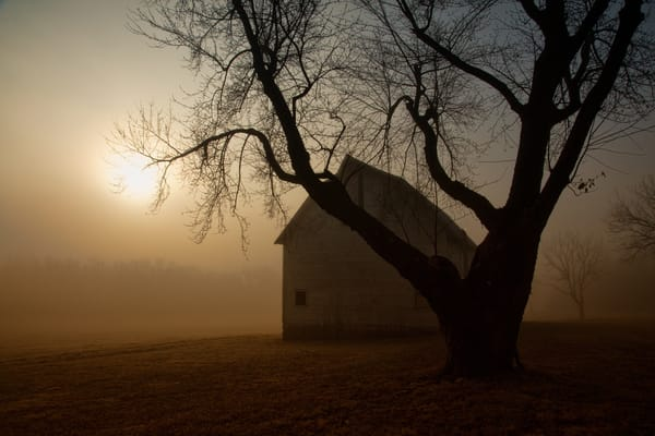 Foggy Old Barn 9732 Fs Art | Koral Martin Fine Art Photography