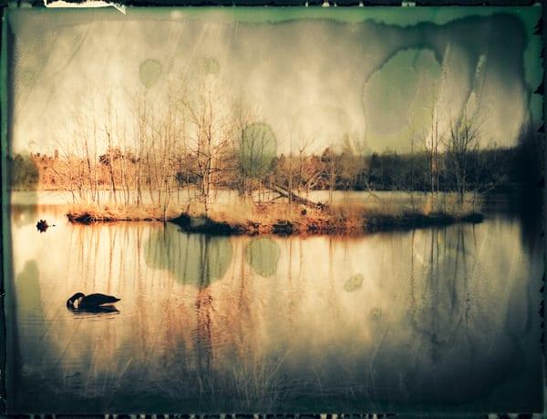 Nature Color 03 Photography Art | Dan Chung Fine Art