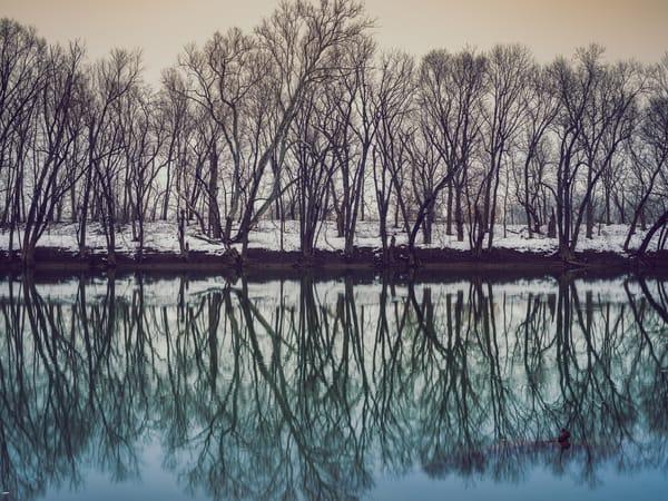 Nature Color 7687 Photography Art | Dan Chung Fine Art