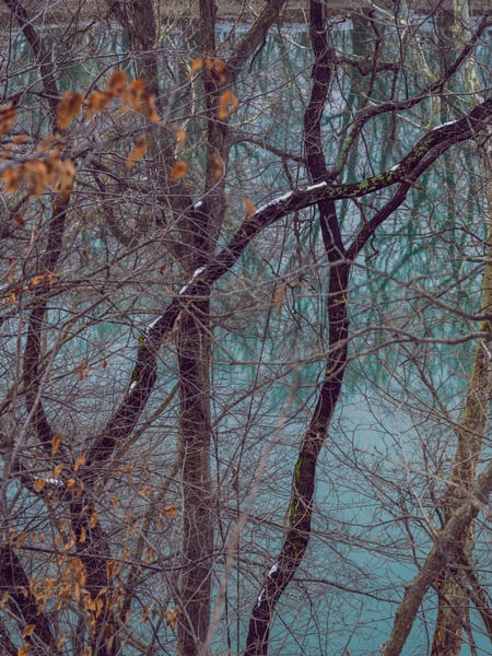 Nature Color 7671 Photography Art | Dan Chung Fine Art