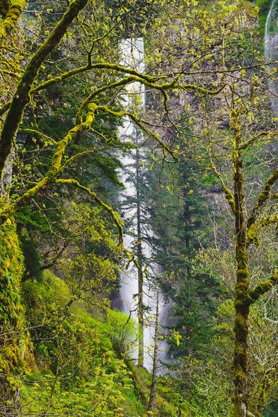 Upper Multnomah Falls, Oregon, 2014