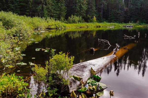 Unknown Lake, Gifford Pinchot National Forest, Washington, 2016