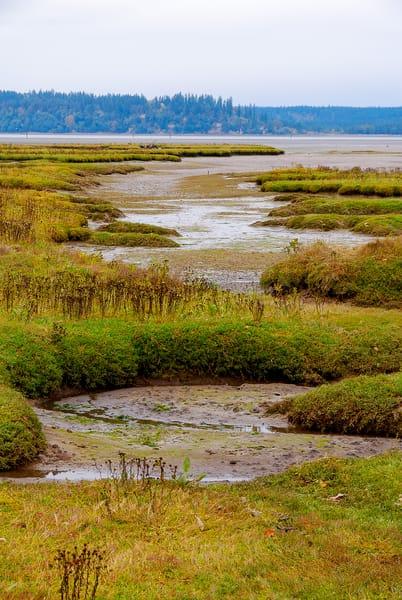 Tide Flats, Nisqually National Wildlife Area, Washington, 2007