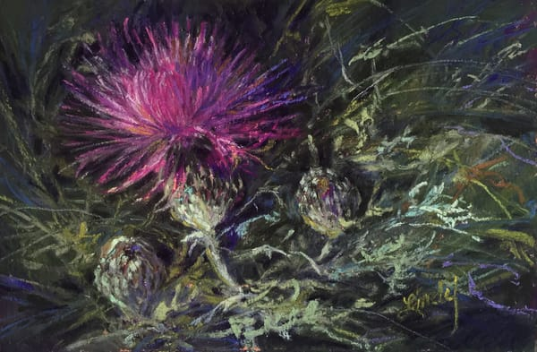 Lindy Cook Severns Art | A Thistle in Time, notecard