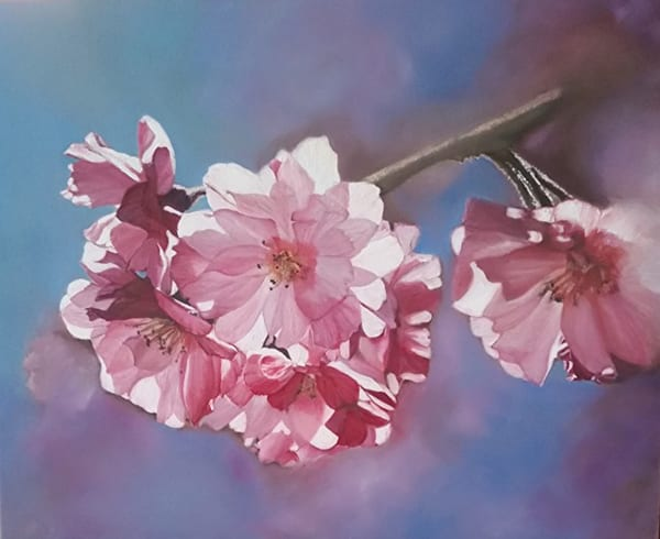 Cherry Blossoms  Art | artalacarte