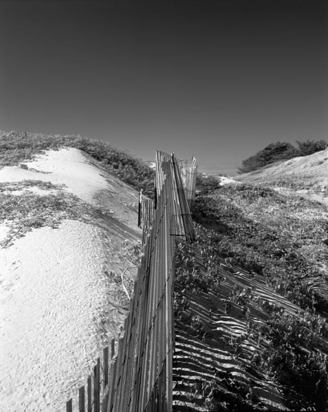 Sand Fence   Surf Dunes Photography Art | Julian Whatley Photography