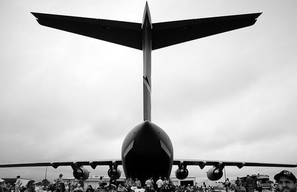 Wing Art | Asaph Maurer