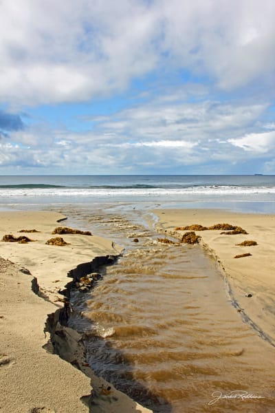 ocean beach portal open