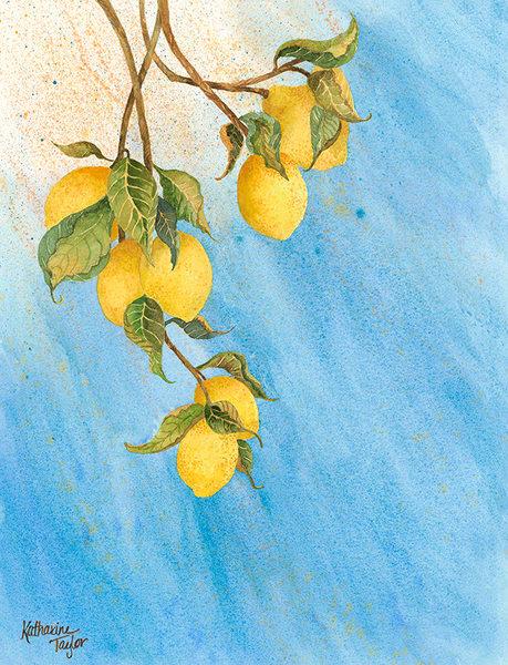 Lemon Drops giclee prints by Katharine Taylor