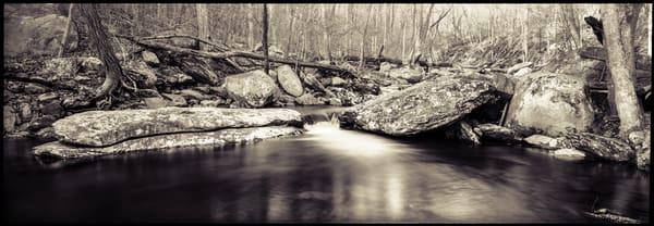 Nature Bw 001 Photography Art | Dan Chung Fine Art