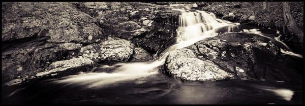 Nature Bw 007 Photography Art | Dan Chung Fine Art