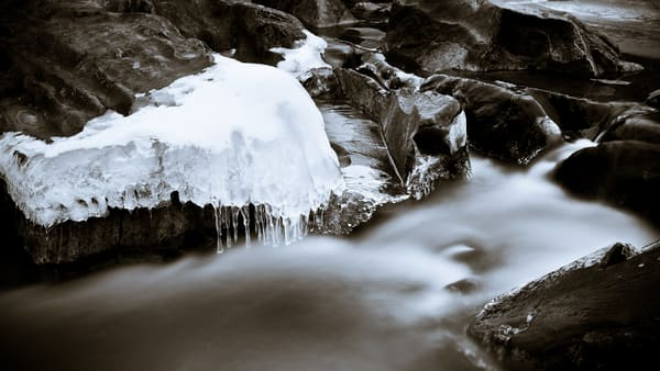 Nature Bw 2363 Photography Art | Dan Chung Fine Art