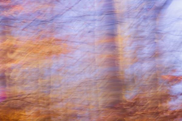 Nature Abstract 4511 Photography Art | Dan Chung Fine Art